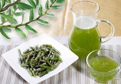 铁皮石斛鲜条榨汁的方法